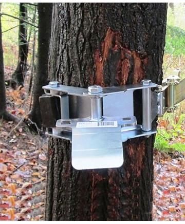 Trädfäste med förankringsband
